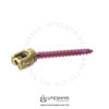 Breakthru Polyaxial Screw 5.5mm